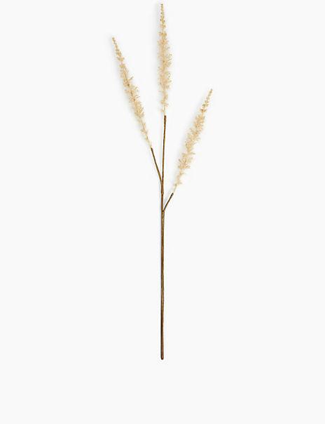 Single Stem Dried Grass