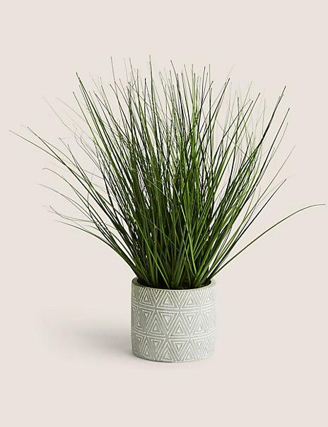 Grass In Geometric Pattern Concrete Pot