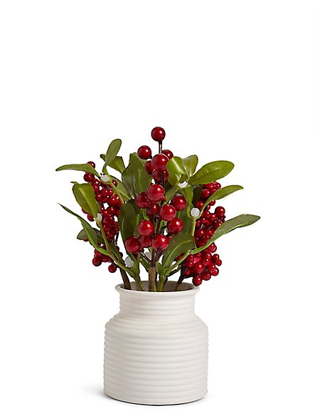 Winter Berry Mistletoe Ms