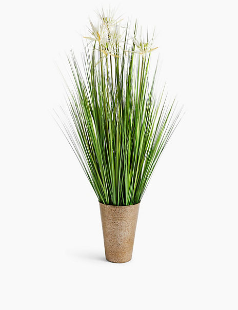 Tall Grass with White Flowers in Tin Pot