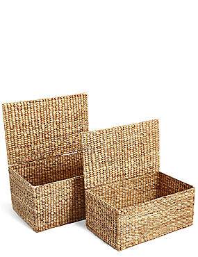 Water Hyacinth Set of 2 Trunks