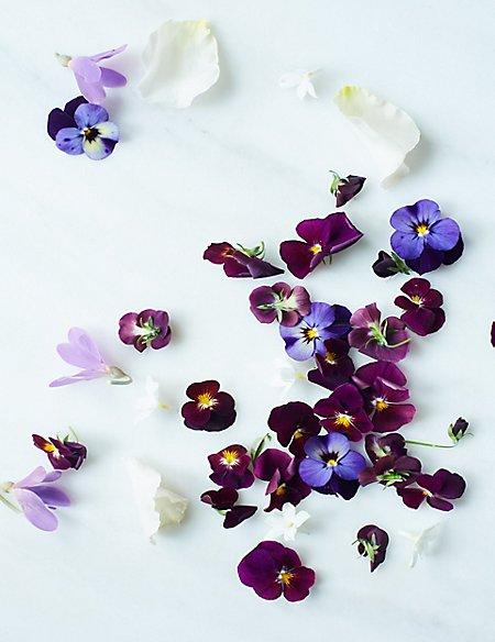 Petals Cloche & Candle