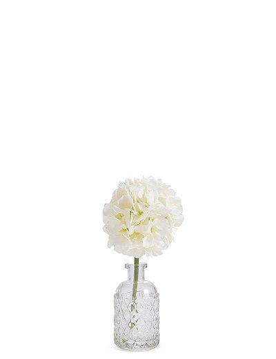 Allium In Vase Marks Spencer London