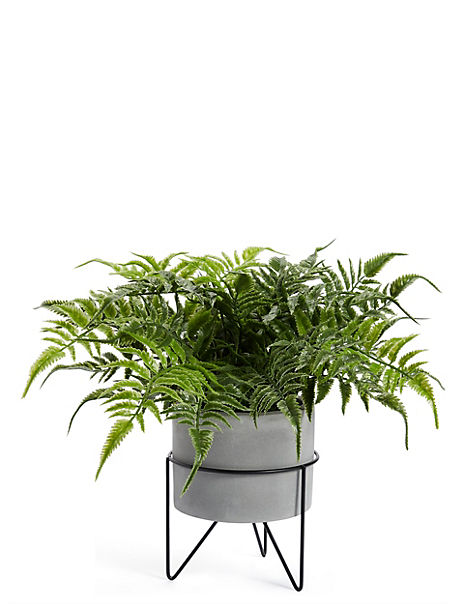 Potted Fern with Stand