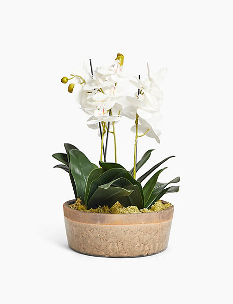 Giant White Orchid Bowl