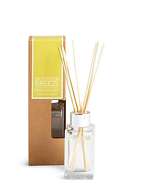 Blossom Breeze 65ml Diffuser