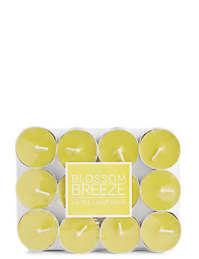 Blossom Breeze 24 Scented Tealights