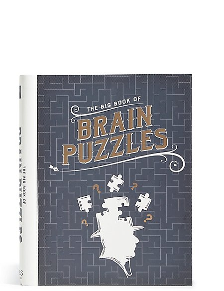 The Big Book of Brain Puzzles