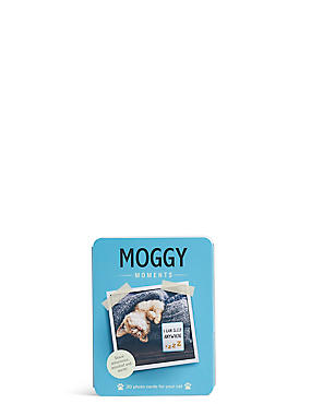 Moggy Moments Flash Cards, , catlanding