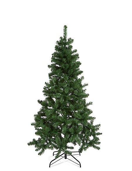 6Ft Nordic Spruce Tree