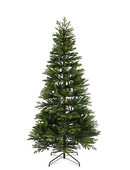 7Ft Lit Fraser Fir Tree