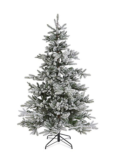 7Ft Lit Frosted Noble Spruce Tree