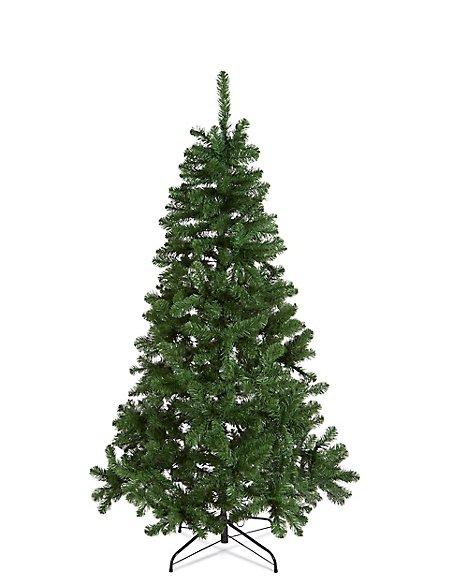 6Ft Lit Nordic Spruce Tree