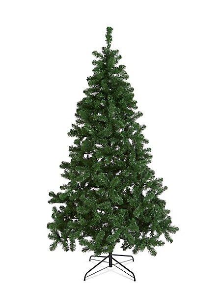 7Ft Nordic Spruce Tree
