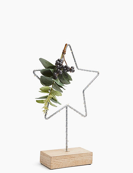 Light Up Star with Foliage Decoration
