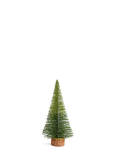 Small Green Ombre Bristle Tree