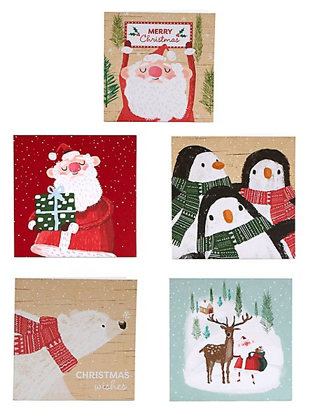 Winter Characters Christmas Charity Cards Pack of 30