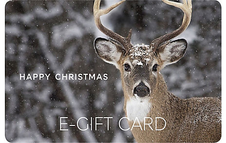 Christmas Stag E-Gift Card