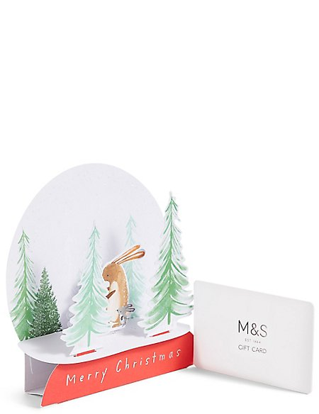 Snowglobe Gift Card