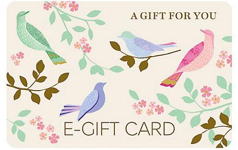 Birds E-Gift Card