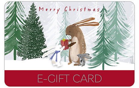 Snowglobe E-Gift Card