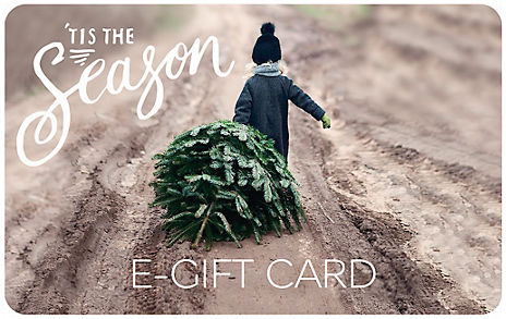 Kid with Tree E-Gift Card