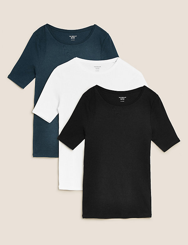 3 Pack Pure Cotton Short Sleeve T-Shirts