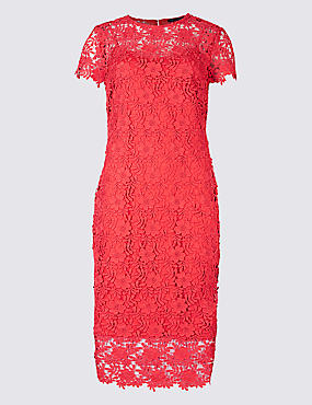 Lace Sheath Short Sleeve Bodycon Midi Dress