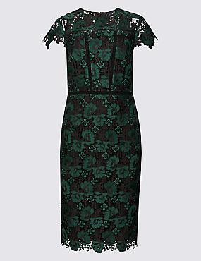 Lace Cap Sleeve Bodycon Dress