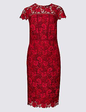 Lace Cap Sleeve Bodycon Midi Dress