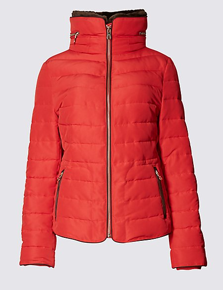 Padded Collared Neck Hooded Jacket