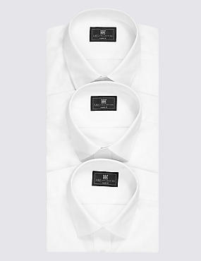 2in Longer 3 Pack Regular Fit Shirts