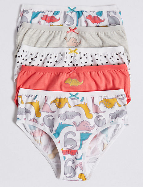5 Pack Dinosaurs Briefs (18 Months - 12 Years)