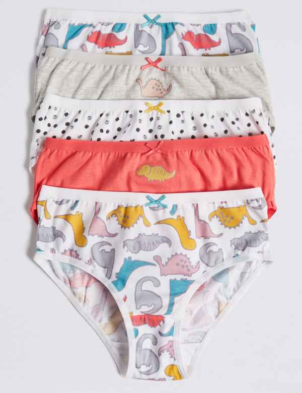 69c6e566db5ba 5 Pack Dinosaurs Briefs (18 Months - 12 Years)