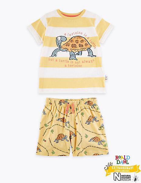Roald Dahl™ & NHM™ Tortoise Pyjamas (1-7 Years)
