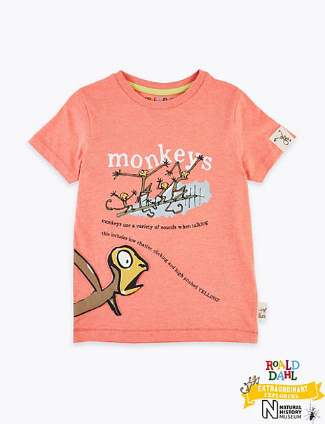 Roald Dahl™ & NHM™ Monkey T-Shirt (2-7 Years)