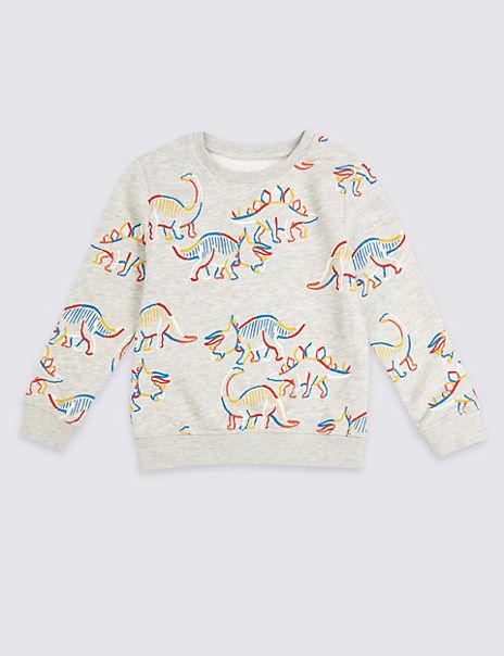 Dinosaur Print Sweatshirt (3 Months - 7 Years)