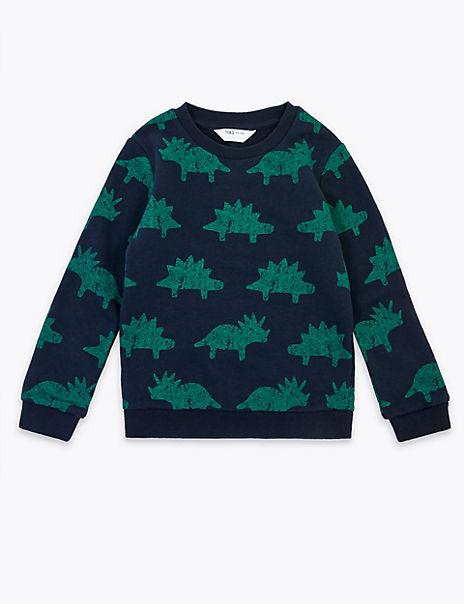 Cotton Dinosaur Sweatshirt (3 Months - 7 Years)