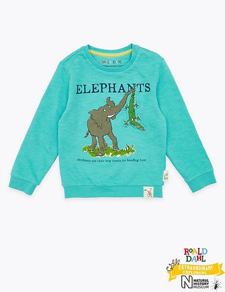 Roald Dahl™ & NHM™ Elephant Print Sweater (2-7 Years)