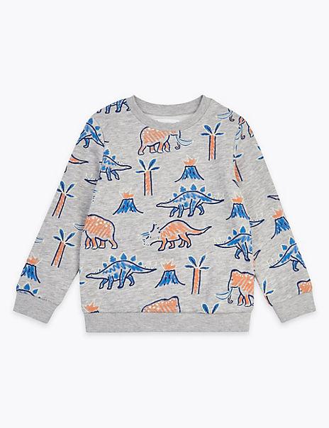 Dinosaur & Palm Print Sweatshirt (2-7 Years)