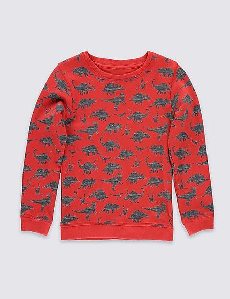 Pure Cotton Dino Sweatshirt (1-7 Years)