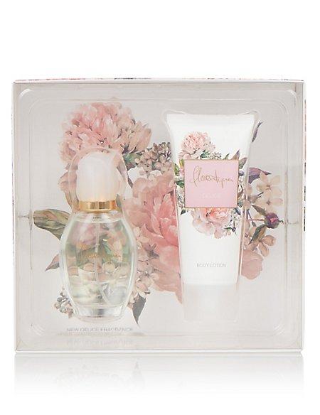Fragrance Coffret