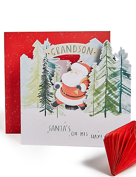Grandson Santa 3D Christmas Charity Card