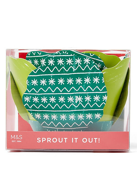 Fun 'Sprout It Out!' Christmas Family Trivia Game