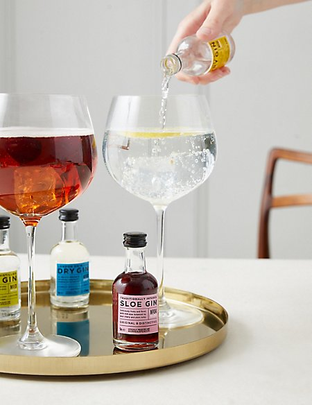 The Connoisseur Gin Tasting Experience