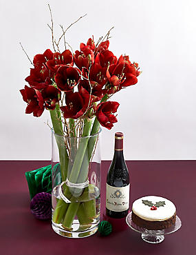 Red Amaryllis, Christmas Cake & Red Wine Festive Gift Selection