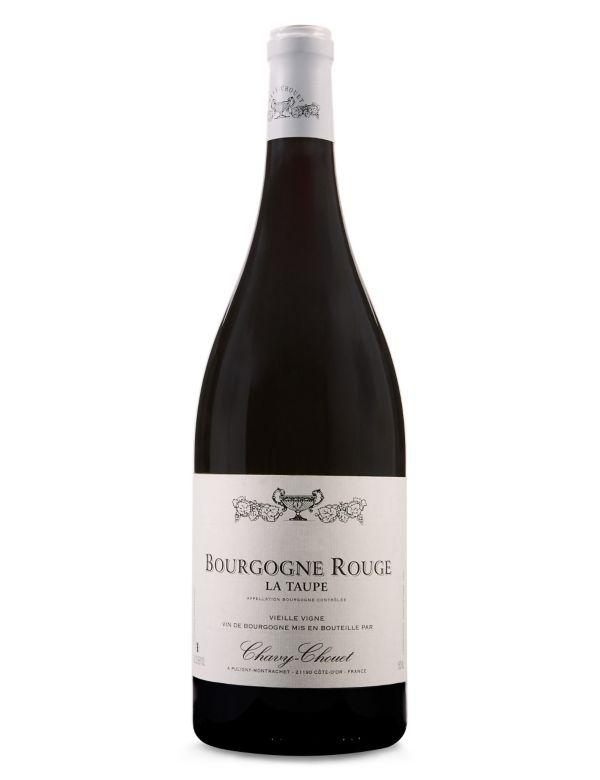 Single Bottles Champagne Spirits Wine Bottles Ms