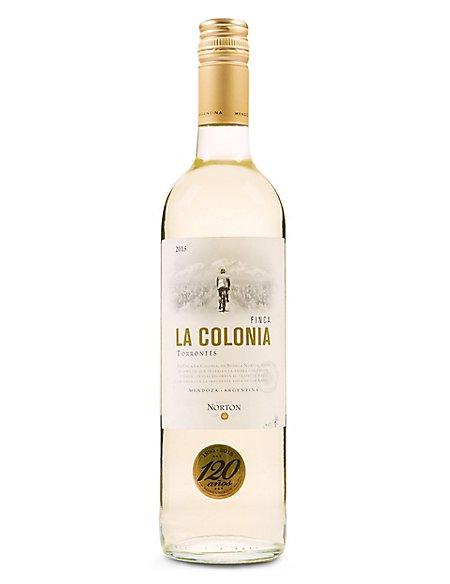Finca La Colonia Torrontes - Case of 6
