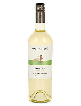 Pionero Sauvignon Blanc - Case of 6