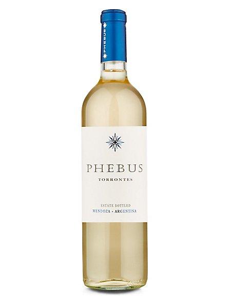 Phebus Torrontes - Case of 6